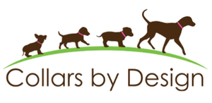 Custom designed dog collars and leashes