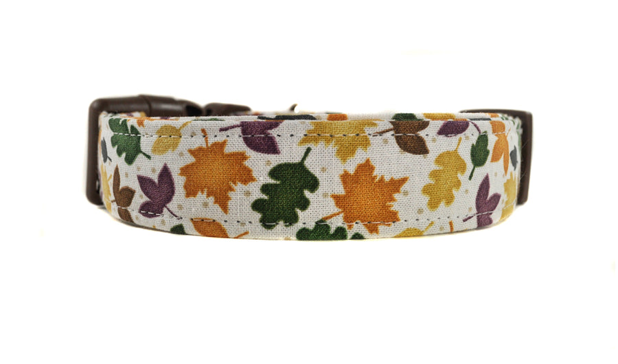 Brown Fall Leaves Dog Collar