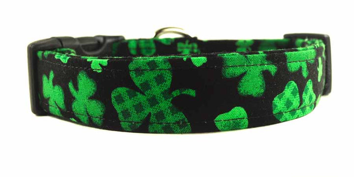 Guinness Dog Collar