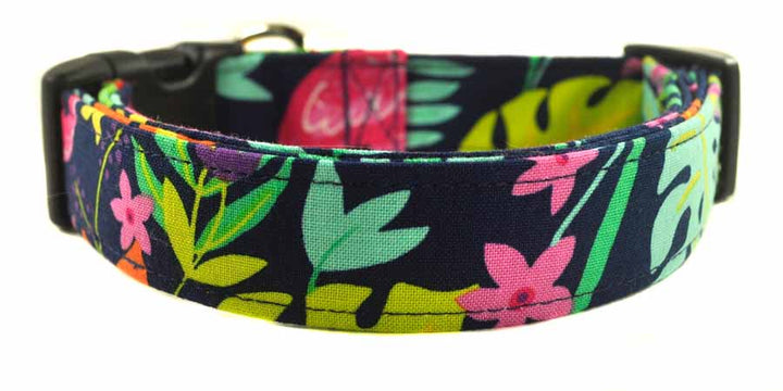 Savannah Dog Collar