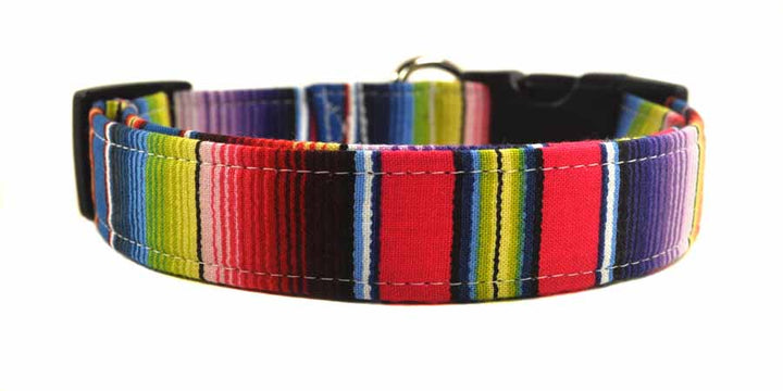 Serape Stripe Dog Collar