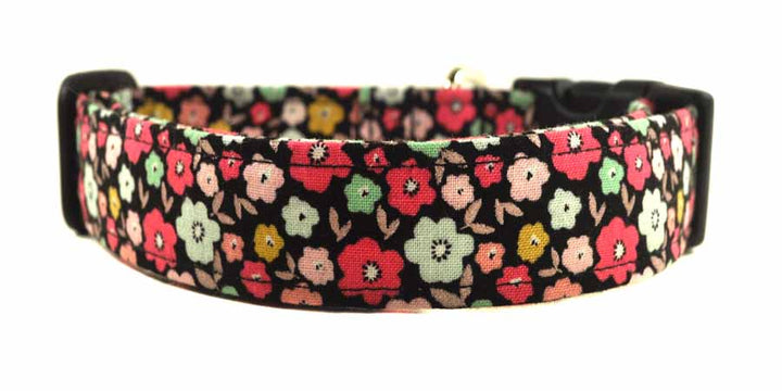 Allie Dog Collar