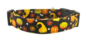 Gourds Dog Collar