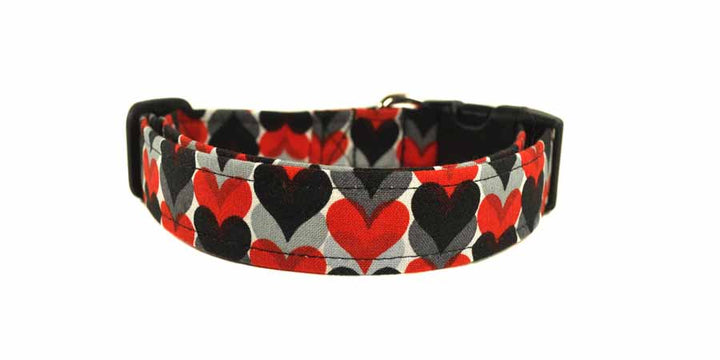 Romeo Dog Collar