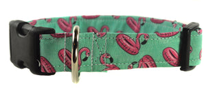 Pool Party Dog Collar - Collars by Design