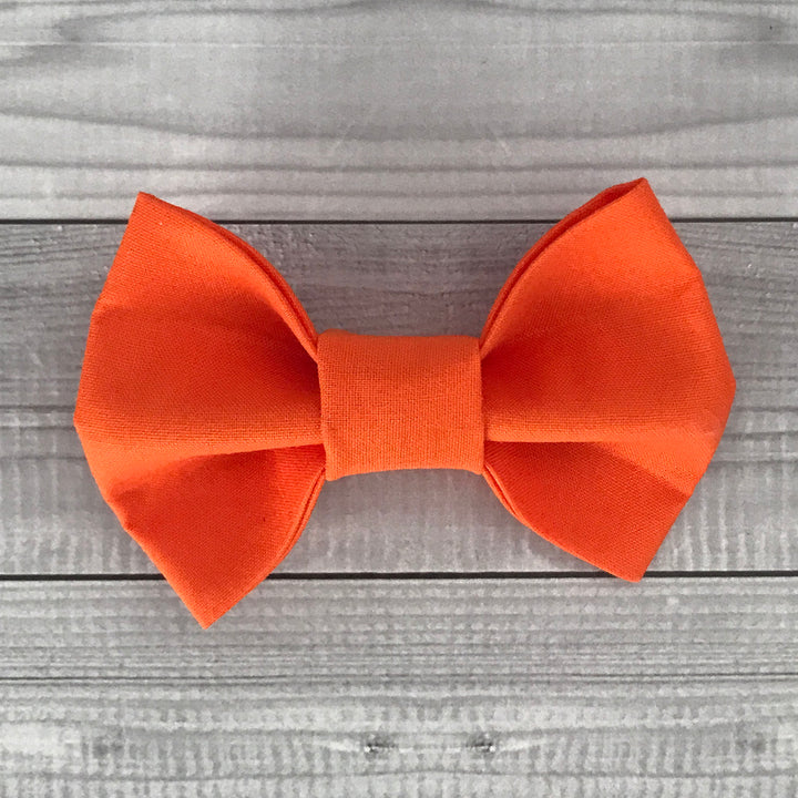 Orange Crush Dog Bow