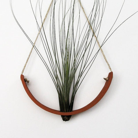 Hanging Ceramic Air Plant Cradle Terracotta