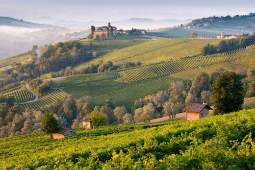 natural wine tour italy