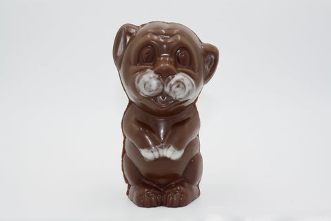 Picture of Swiss Chocolate Sitting Pup