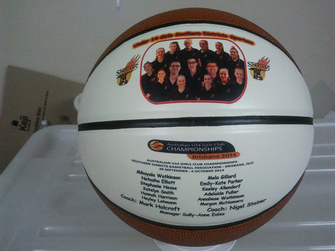 Full Size 2 Panel Basketball