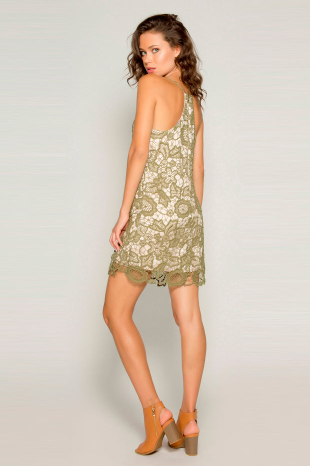 Olive Cotton Crochet A-Line Lace Dress by Lavender Brown 002