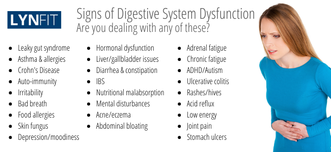 Signs of Digestive System Dysfunction