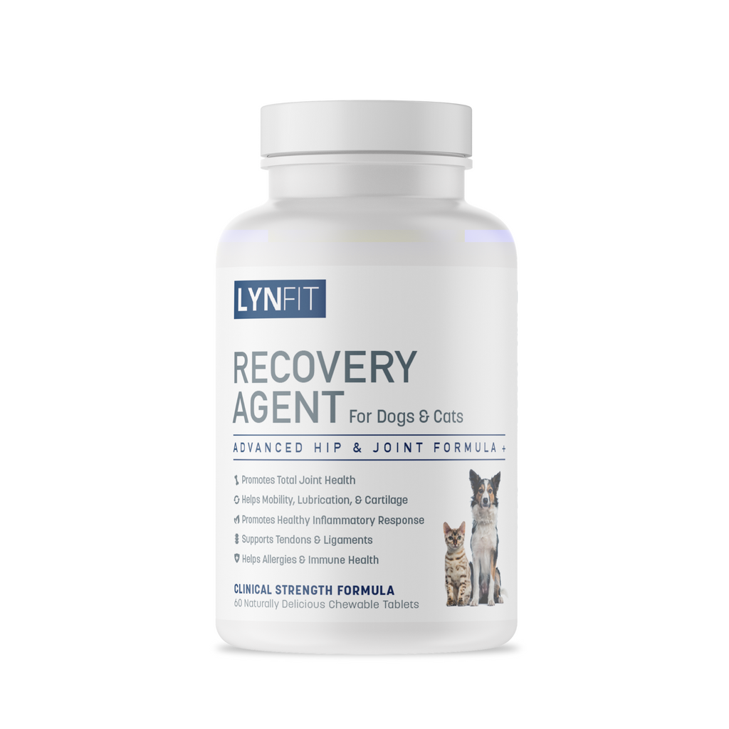 Recovery Agent for Dogs & Cats Advanced Hip & Joint Formula + MSM | 60 Chewable Tablets