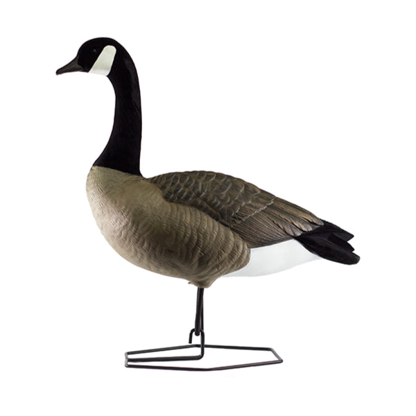 Goose Decoys - Canadian Waterfowl Supplies