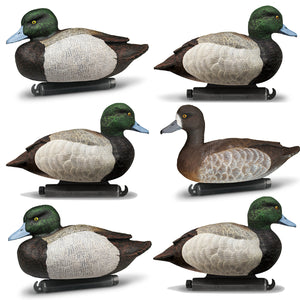 DOA Refuge Bluebill Decoys Foam Filled