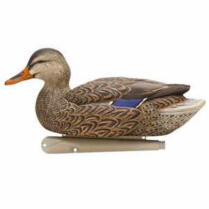 Avian-X Top Flight Early Season Mallard Decoys