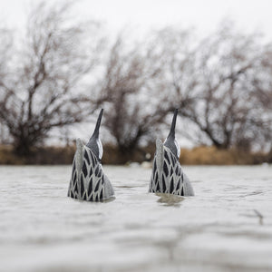 Tanglefree Pro Series Pintail Feeder Butt Decoys