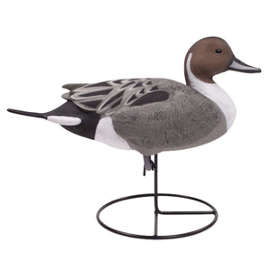 Tanglefree Pro Series Full Body Pintail Decoys