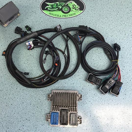 Alpha 2.0L LSJ Ecotec Stand Alone Wiring Harness with OEM ECM