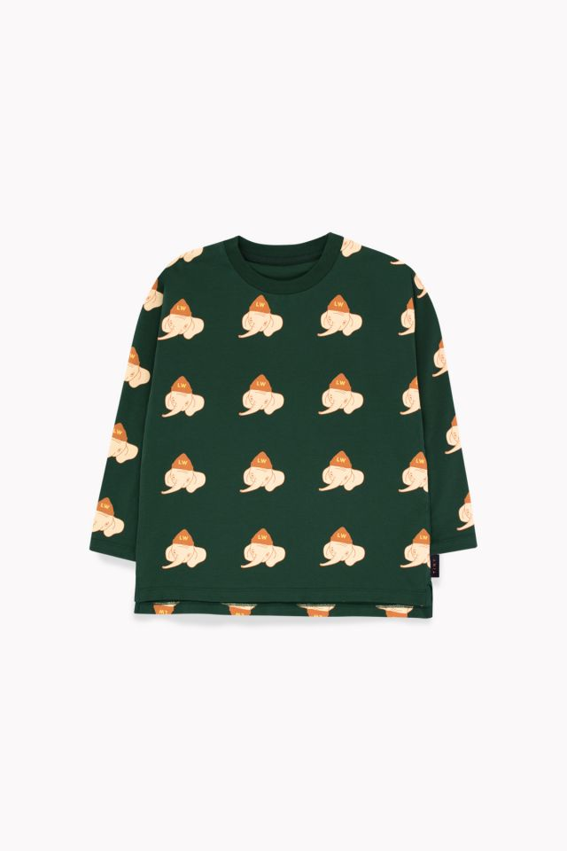 """LUCKYPHANT"" LS TEE bottle green/light cream"