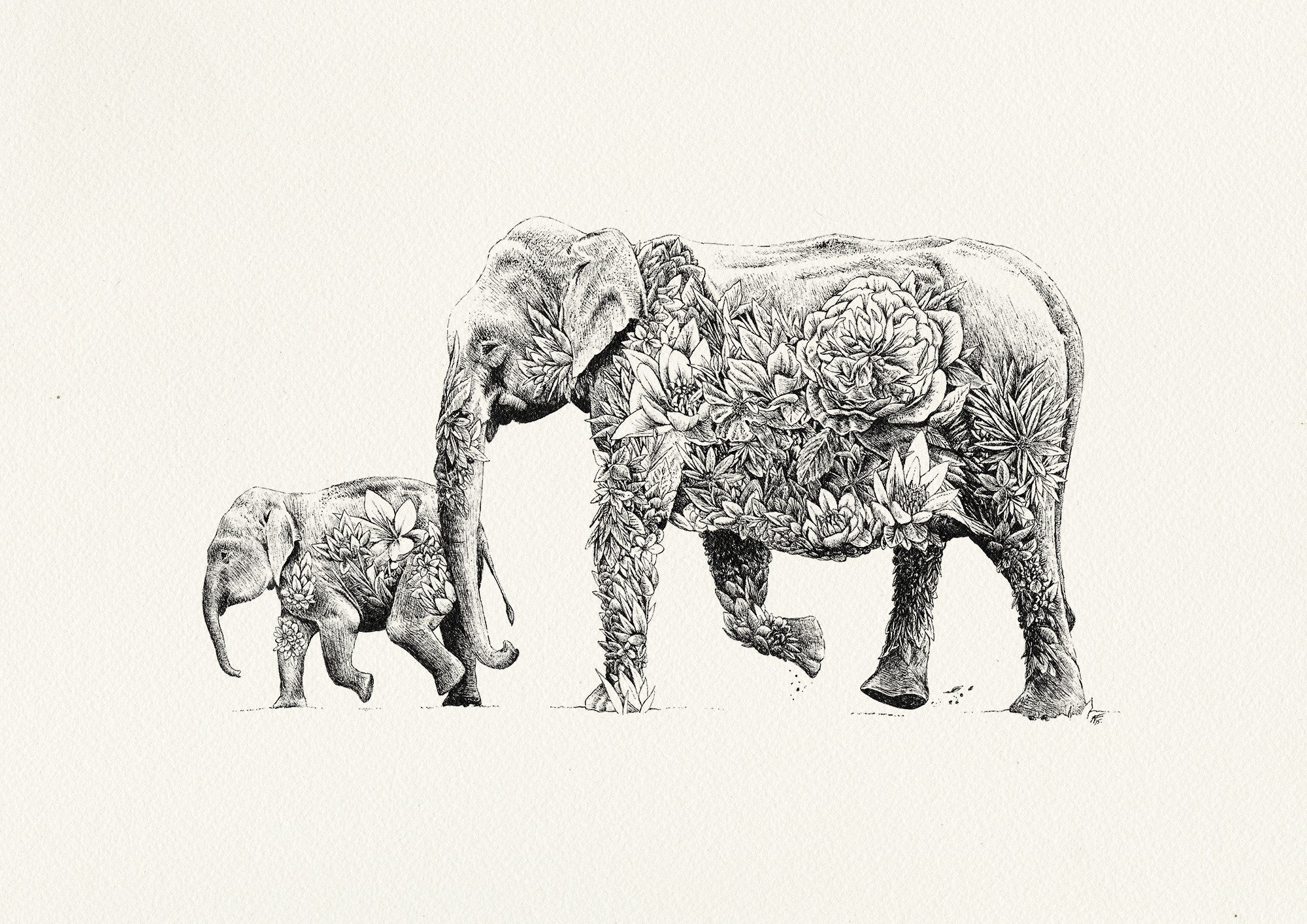 art for wildlife u2013 marini ferlazzo u2013 marini ferlazzo art for