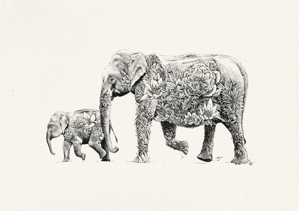 Asian Elephant - Giclée Print