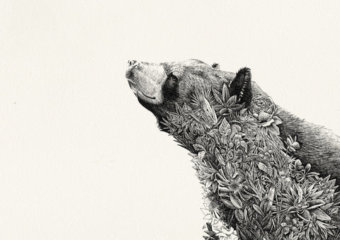 Asiatic Black Bear- Giclée Print