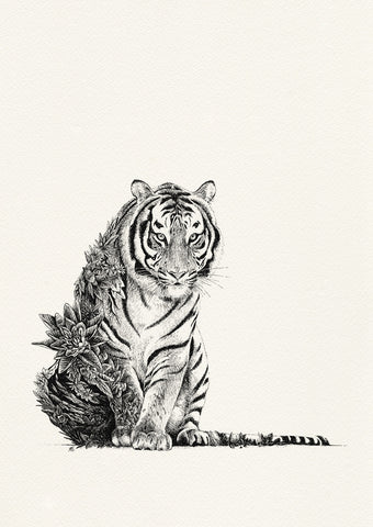 Bengal Tiger by Nathan Ferlazzo