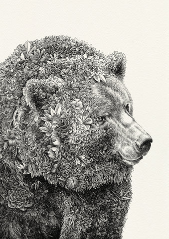 Brown Bear - Giclée Print
