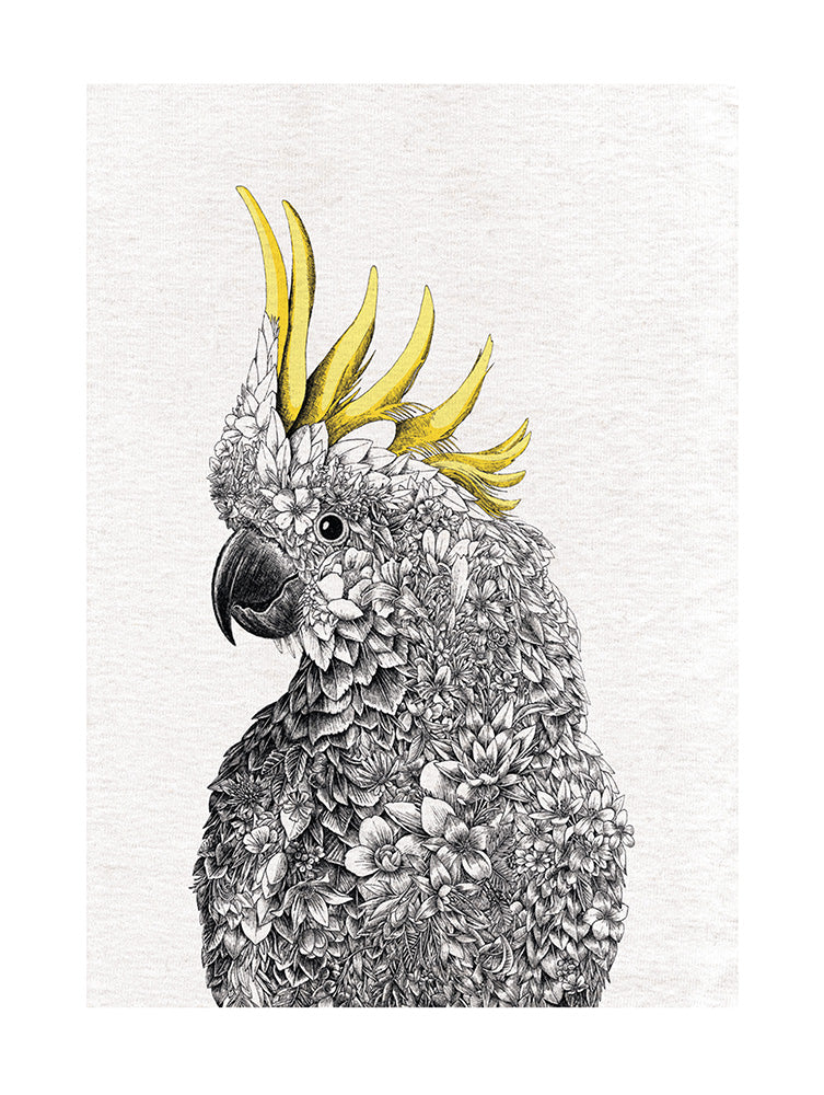Sulphur-crested Cockatoo - Tea Towel
