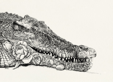 Saltwater Crocodile by Nathan Ferlazzo
