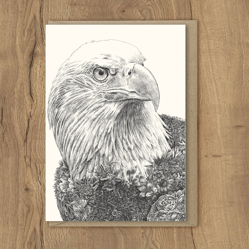 Bald Eagle - Greeting Cards