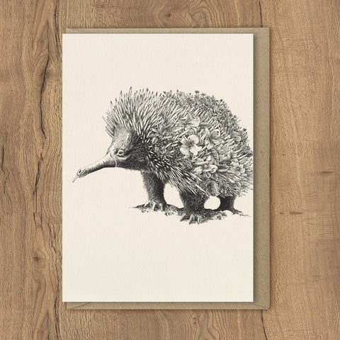 Echidna - Greeting Cards
