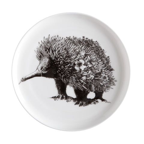Echidna - Maxwell & Williams Plate/Dish