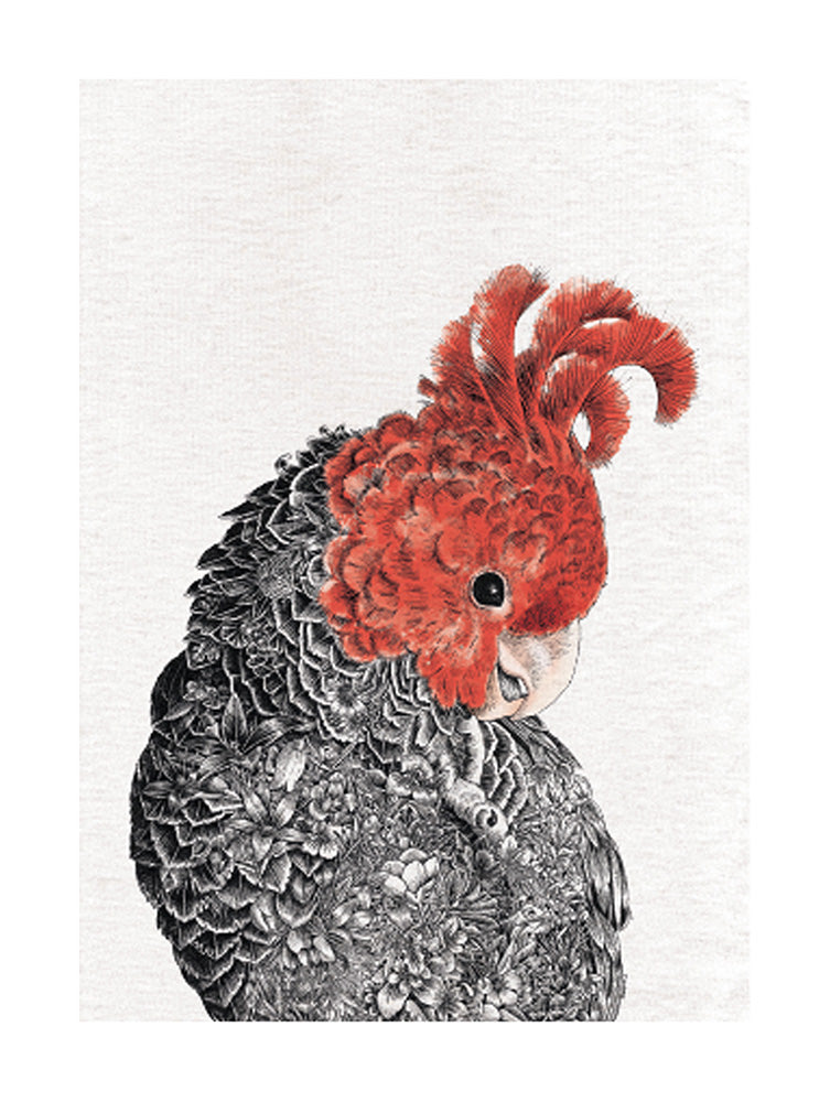 Gang-Gang Cockatoo - Tea Towel