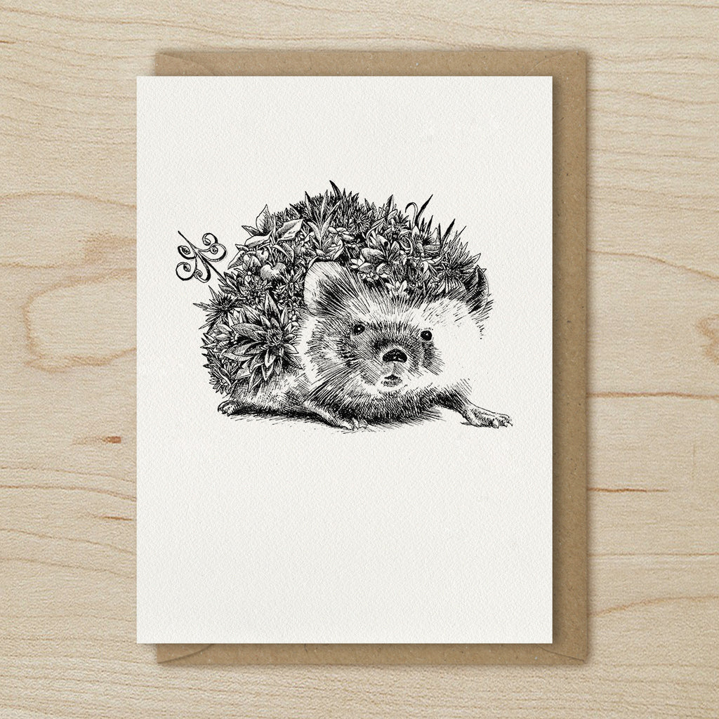 Hedgehog - Greeting Cards