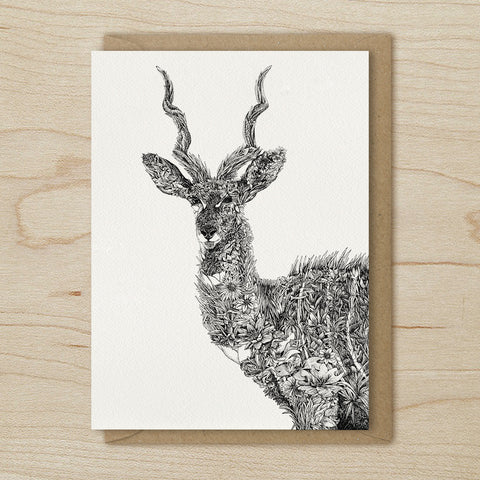 Lesser Kudu - Greeting Cards