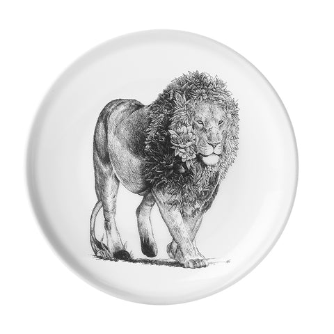 African Lion - Maxwell & Williams Plate/Dish