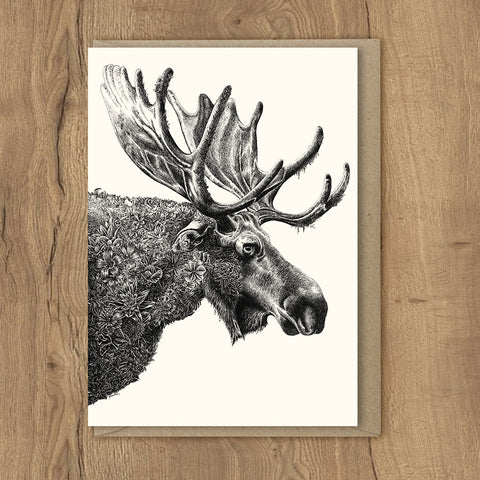 Moose - Greeting Cards