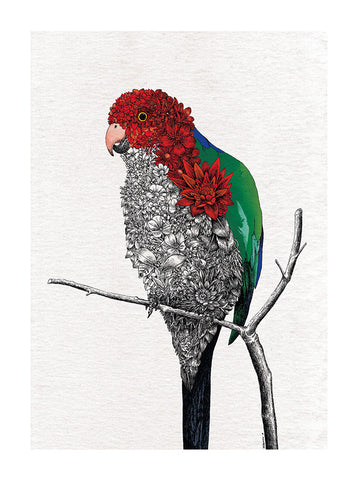 Australian King Parrot - Tea Towel
