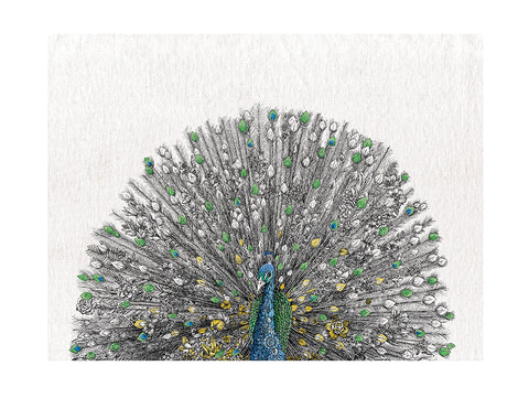 Peacock - Tea Towel
