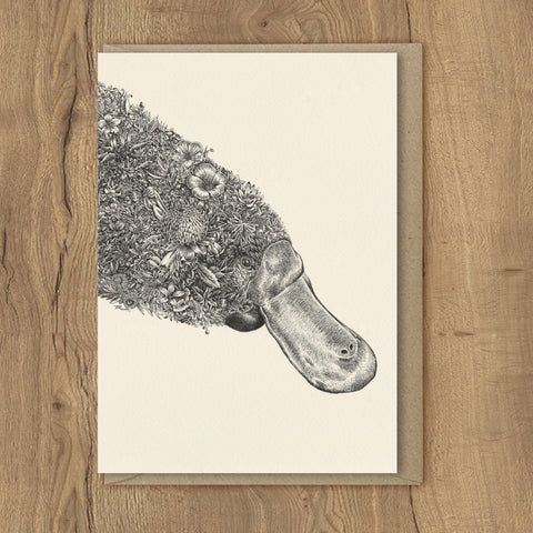 Platypus - Greeting Cards
