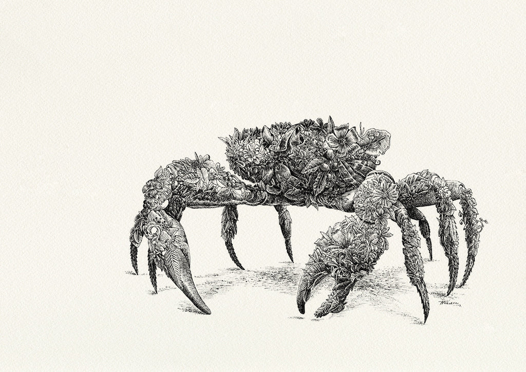 Christmas Island Red Crab - Giclée Print