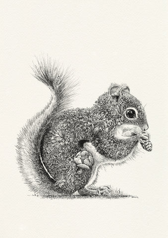 Red Squirrel - Giclée Print
