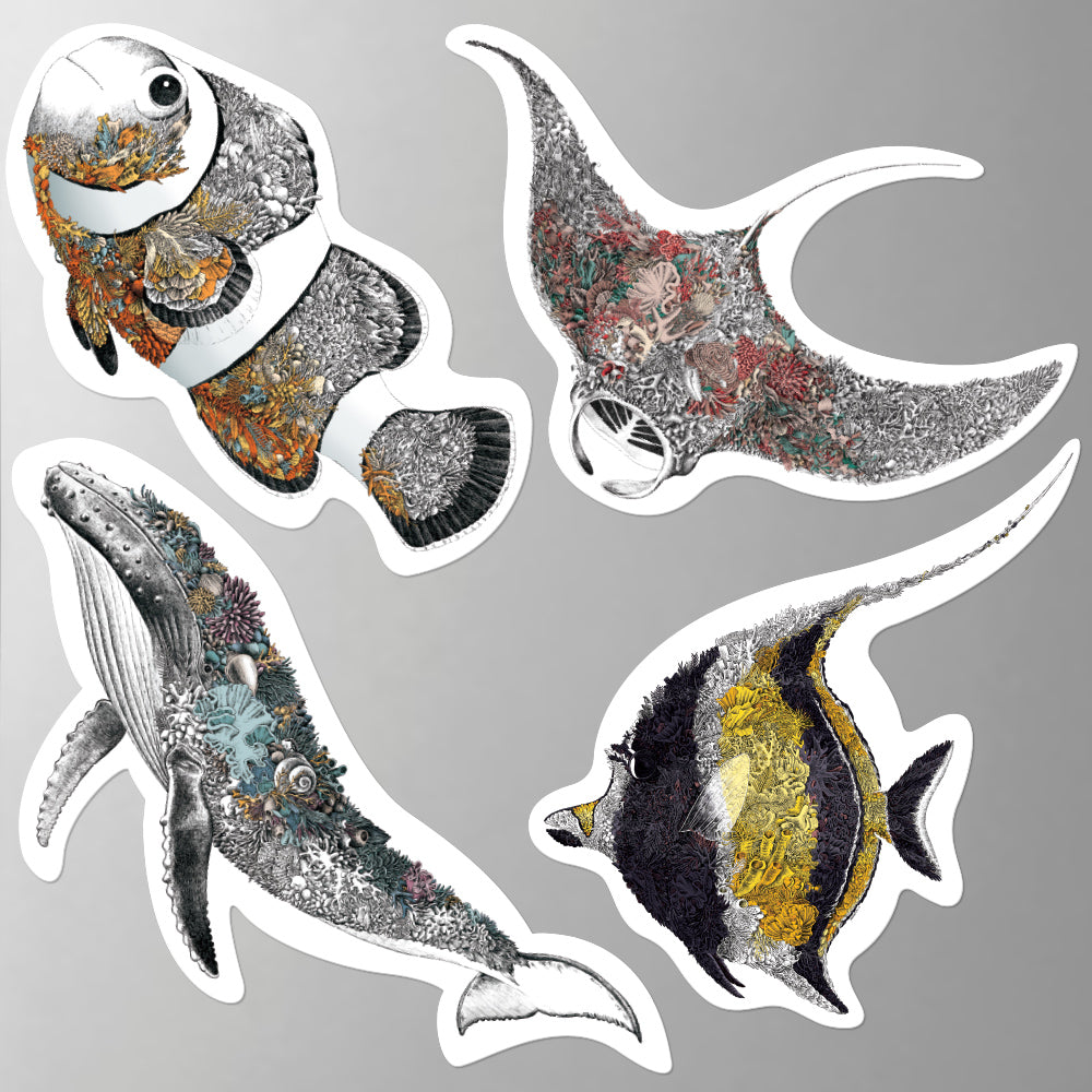 Reef Life - Fridge Magnet Set 1