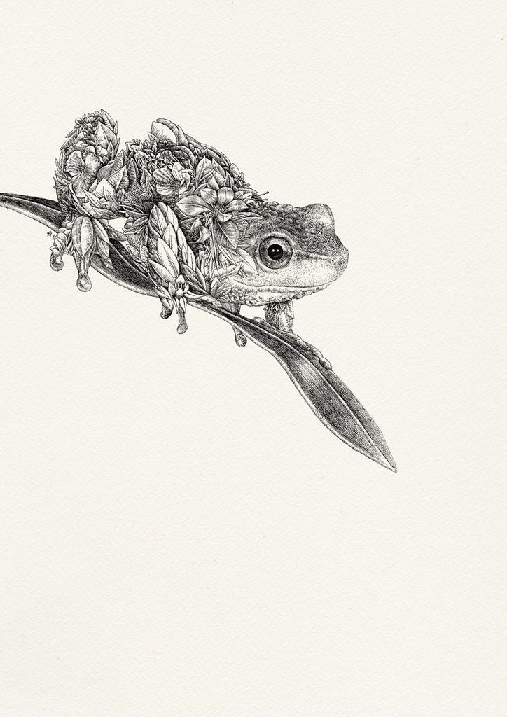 Spotted Tree Frog - ORIGINAL