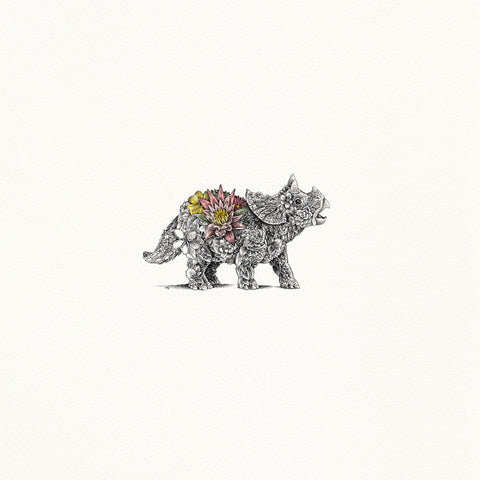 Baby Triceratops - Giclée Print