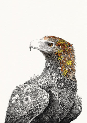 Wedge-tailed Eagle - Giclée Print