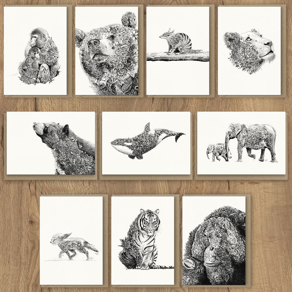 Wildlife Greeting Card Set 1