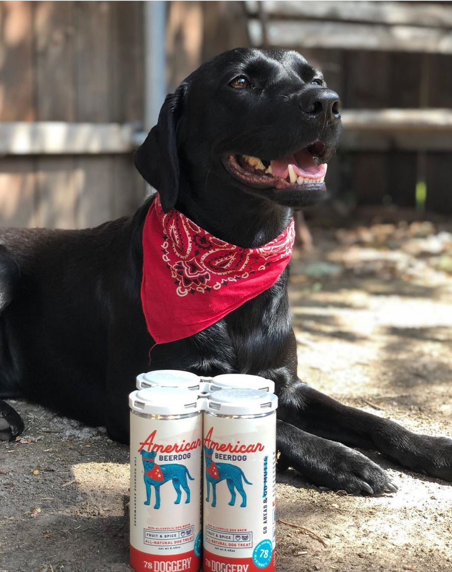 American Beerdog - 4 Pack Dog Brew 78 Doggery